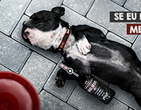 DogBeer - República Pet