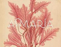 Branding para A-María: Tropical Clothing