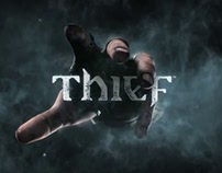 THIEF modules