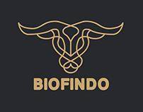 Biofindo Logo Options