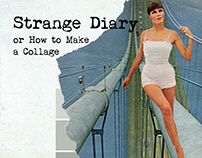 Book Design • Strange Diary, or How to Make a Collage