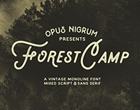 Forest Camp Font