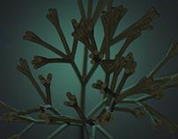 Branchy