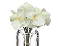 RE: flower packaging