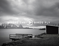 Where the birds fly / Slideshow