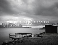 Where the birds fly / Slideshow