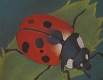 LadyBug - Soft Pastel