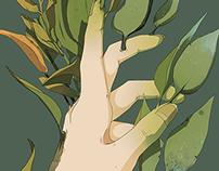 Daphne's Hand