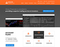 Vinson Financials