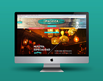 Grupo Pacífica Website