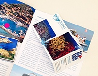 Diving Isola Del Giglio - Web, Social, Brochure -