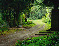 A Beautiful Cemetery: Hauptfriedhof (Frankfurt am Main)