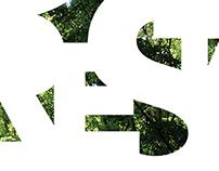 Social Issue Poster/Deforestation
