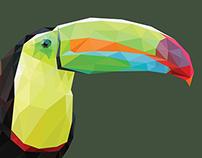 Toucan Polygon Art