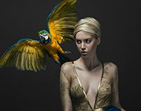 """Birds""| GLASSbook"