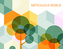 Meticulous World