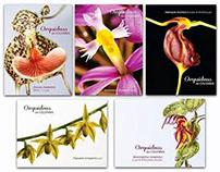 Orquídeas de Colombia - Postales
