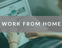 20 Best Work From Home Jobs