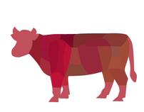 Katalog Frischfleisch