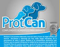 ProtCan (Branding)