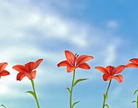 9 Lilies