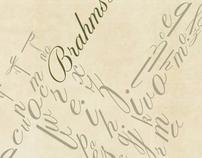 Brahms Letters