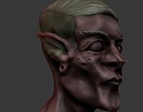 Elf Headsculpt