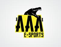 AAA E-SPORTS Branding