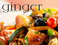 Magazine Proposal for Ginger Hotels group