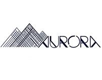 Aurora Fast Rail Network