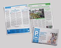 Projeto Gráfico do Jornal Página UM