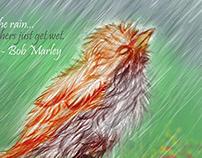 Welcoming the Monsoon