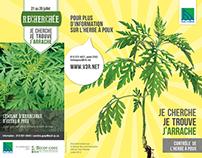 Contrôle de l'herbe à poux | Ville de Trois-Rivières