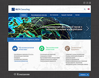 BLN Consulting / Web