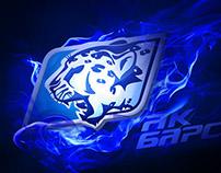 Hockey club Ak Bars logo