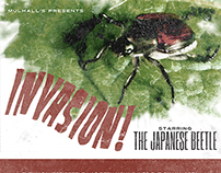 Japanese Beetle email marketing