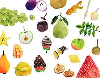 臺灣好果食 _ Taiwan Fruit & Food