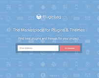 Pluginbag launch page
