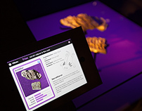 Interactive signs for dinosaur exhibition