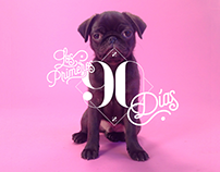 The First 90 Days | Dogourmet Calendar