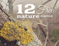 12 Free Nature Photos v.2