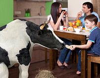 """Рекламные постеры для ТМ """"Молочная ферма"""""""
