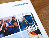 CMI – The World bank, Annual Report 2013
