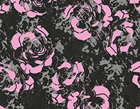 Pink Panther Rose Garden