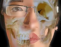 Infografia (sistema oseo ) Huesos de la cabeza
