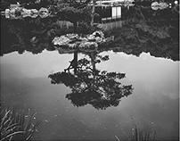 Japan-x