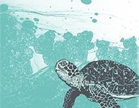 Sea Foam Sea Turtle
