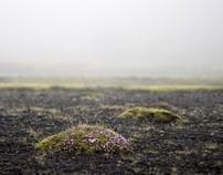 The Icelandic soul // íslenska sál