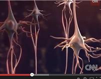 CNN | Fish oil & traumatic brain injury : @3:37