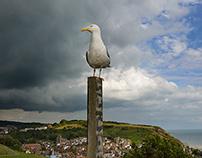Summer thunderstorm over Hastings